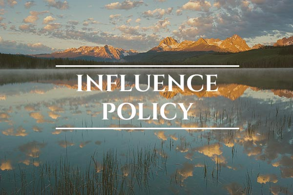 Unprotected: Snake River Salmon - USA: Influence Policy