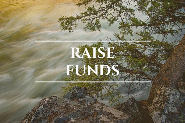 Unprotected: Snake River Salmon - USA: Raise Funds