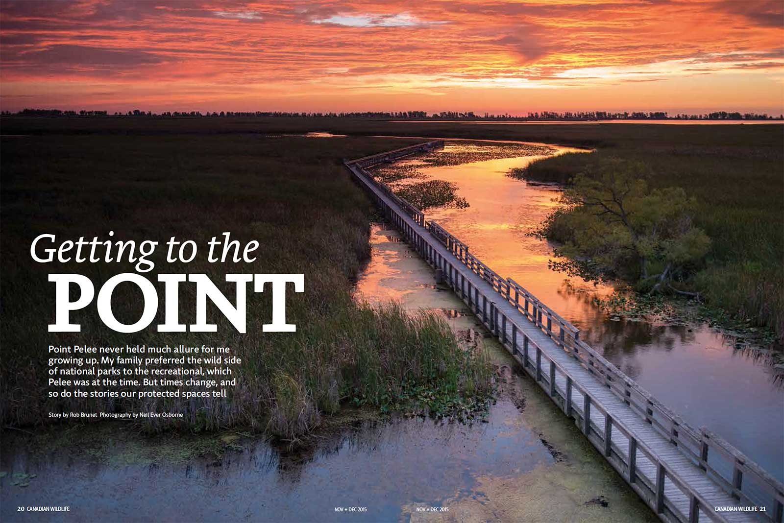 On Assignment: Canadian Wildlife Magazine: Getting to the Point