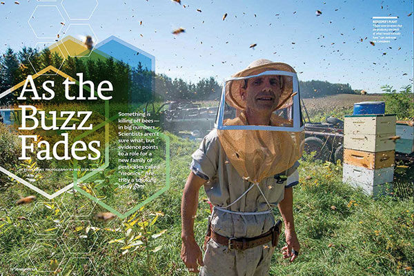 On Assignment: Canadian Wildlife Magazine - As the Buzz Fades